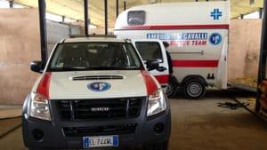 ambulanza-cavallo-2