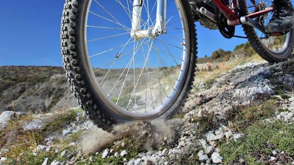 Una pedalata in mountain bike tra boschi e colline della Romagna