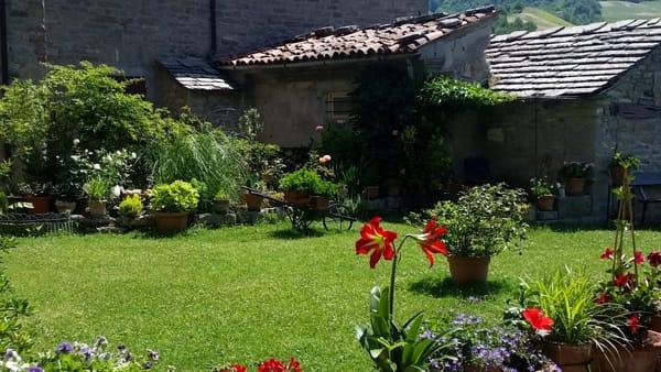 Draghi d'acqua dolce ed altri animali fantastici a San Benedetto