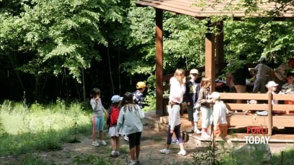 """Domenica al giardino botanico: visita guidata e laboratorio """"Caccia alla pianta"""""""