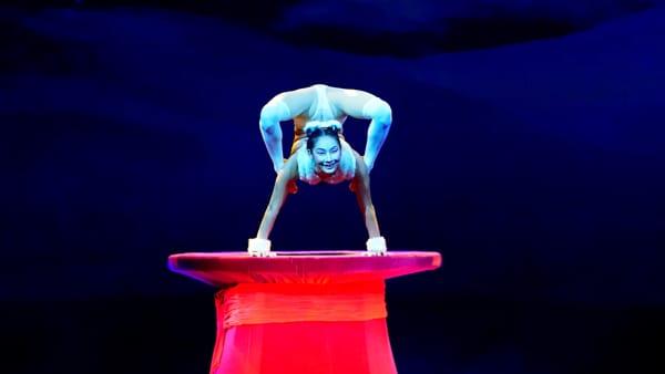 """""""Alis"""", per le festività di Natale arriva al Palafiera lo show con i migliori artisti dal Cirque du Soleil e Nouveau Cirque"""