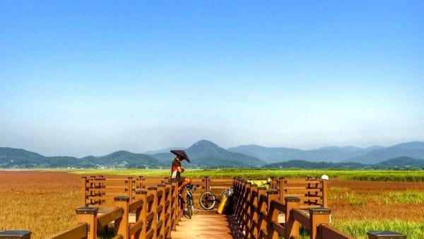 Michele Sanna e i consigli per una pedalata in Corea del Sud