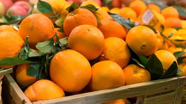 Contro i malanni di stagione vitamina C alla riscossa: degustazioni e piatti al Mercato di viale Bologna