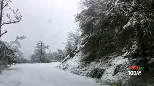 Il Passo della Braccina si veste di bianco. E un daino salta sulla soffice neve