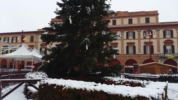 Prima grossa nevicata dell'inverno su Forlì: l'albero di Natale e piazza Saffi si imbiancano