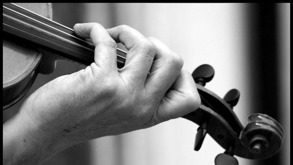 Il Quartetto Fonè e Giovanni Ricciardi ospiti di Entroterre Festival