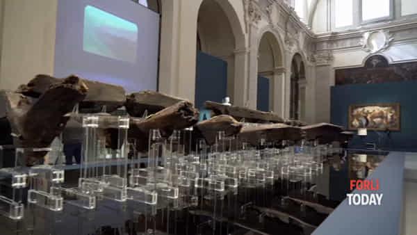 L'antica nave greca di 2.600 anni fa al San Domenico: le immagini e la presentazione