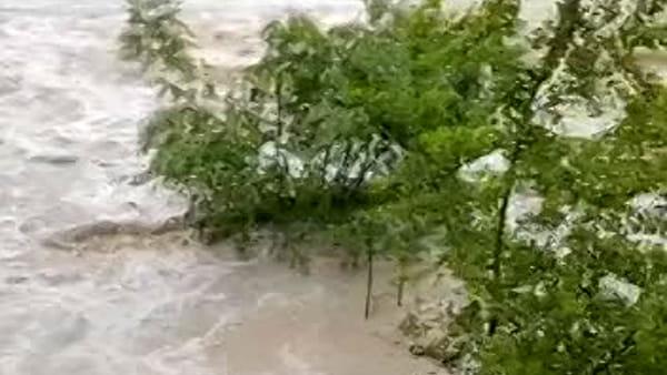 La tumultuosa piena del fiume Bidente a Meldola