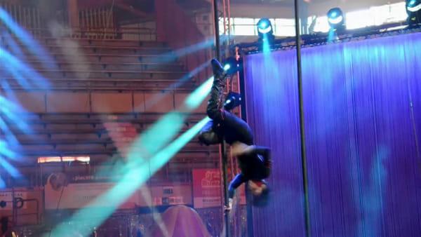 """A Forlì le stelle mondiali de """"Le cirque"""": le prove delle esibizioni mozzafiato, VIDEO"""