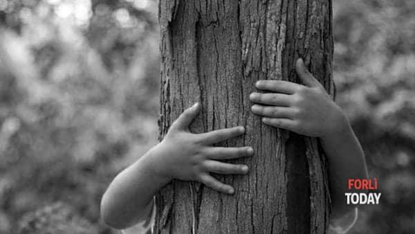 Laboratorio ad hoc nella Giornata nazionale dell'albero