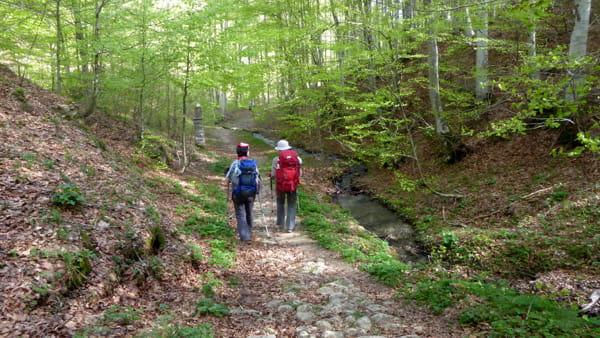 Tra monti, grotte e reliquie si percorre il Cammino di Sant'Antonio
