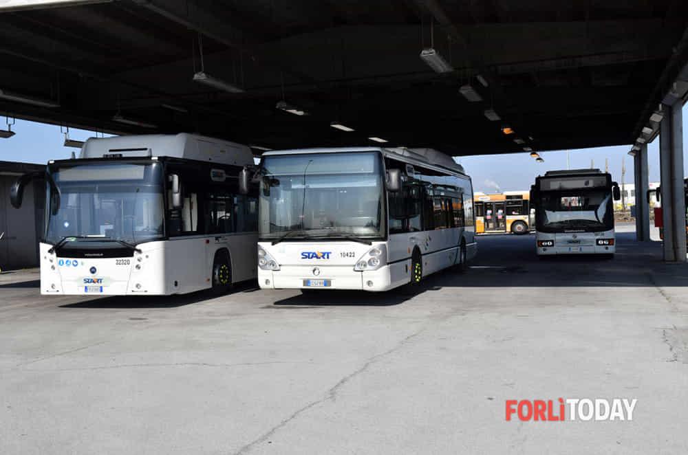 Giovani autisti sui bus di Start Romagna. Parte un programma di formazione gratuita